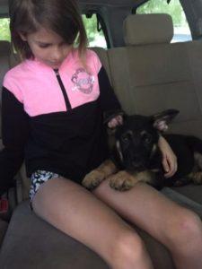Zauberberg Puppy Owners are Happy
